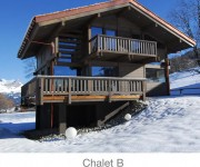 Megeve Chalets for sale Princesse french alps chalet b