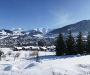 megeve_villaret_chalet for sale 3